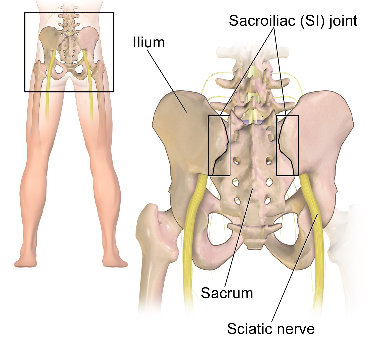 Si joint pain