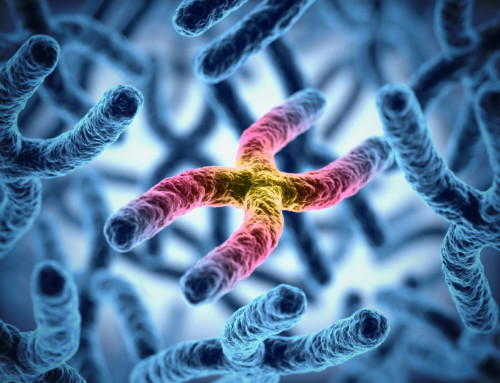 The Telomere Effect: Taking Control of Your Cellular Aging